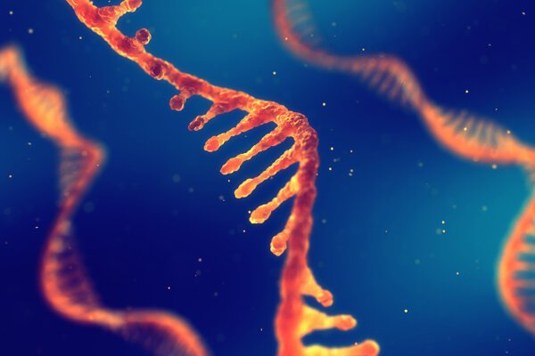 """Prezident firmy Moderna Stephen Hoge hovorí o mRNA, ako o """"softvére života""""."""
