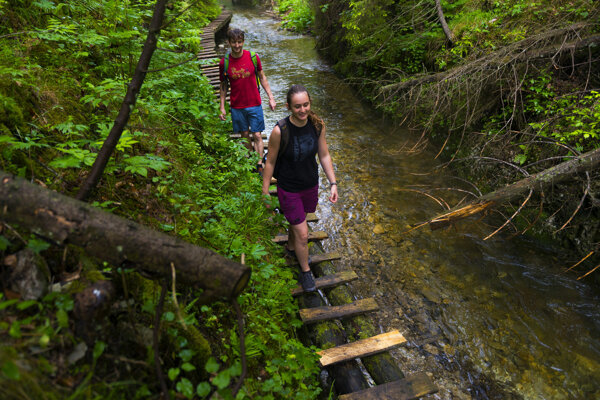 Les a voda príjemne osviežia.