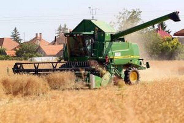 Hustosiate obilniny na tom neboli až tak zle, ako na tom budú jesenné plodiny, ak čím skôr nezaprší.