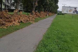 Takto zachytil konáre pod stromami Radomír Čeremeta na stránke mesta Humenné na sociálnej sieti.