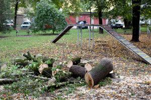 Stromy spílili.
