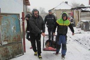 Odchyt psov v Chyzerovciach.
