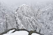 Silná námraza pri takmer nulovej viditeľnosti dotvára nádhernú zimnú atmosféru.