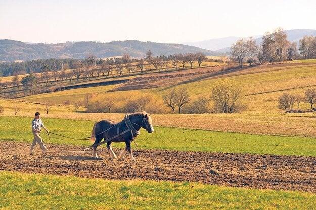 Zvyšky jemnozrnnej krajinnej mozaiky sa do súčasnosti zachovali už len v bezprostrednom okolí niektorých vidieckych sídel. Dobrým príkladom takýchto miest sú moravské obce Študlov a Lačnov.