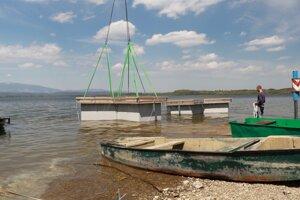 Plávajúce ostrovy pre rybára riečneho osadili do priehrady minulý rok.