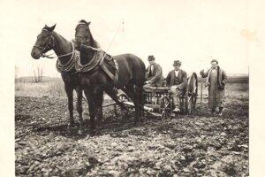 Mnohým Rakovčanom prinášalo obživu obrábanie pôdy.