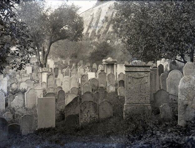 Dnes už neexistujúci staronový židovský cintorín