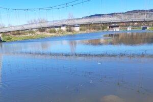 V rieke Poprad hynú ryby.