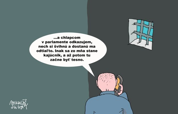 Karikatúra - 20.5.2021.