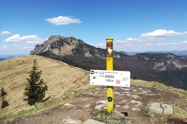 Z vrchu Osnica je nádherný výhľad na Veľký Rozsutec.