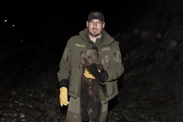 Jaroslav Slašťan zo zásahového tímu pre medveďa hnedého.