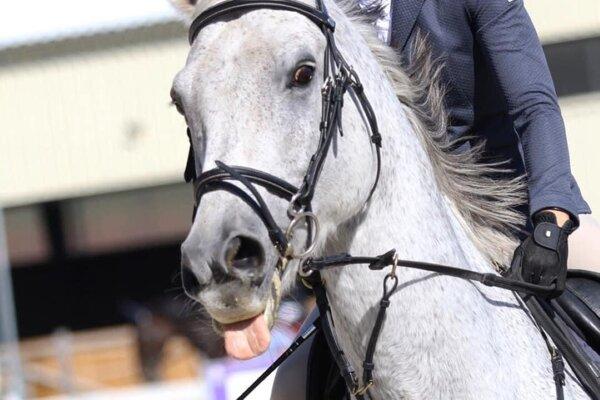 Ranč neďaleko Lučenca ponúka nielen bežnú jazdu na koni, ale aj veľa radosti pre deti.