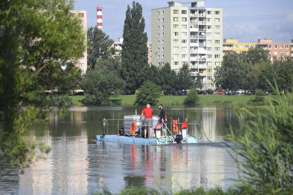 Čistenie jazera v Košiciach.