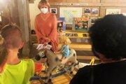 Výstava priťahuje do Králikovho mlyna v Nemšovej malých i veľkých priaznivcov hračiek.