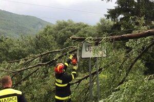 Na Lipovci odtrhnutý strom poškodil dopravné značenie.