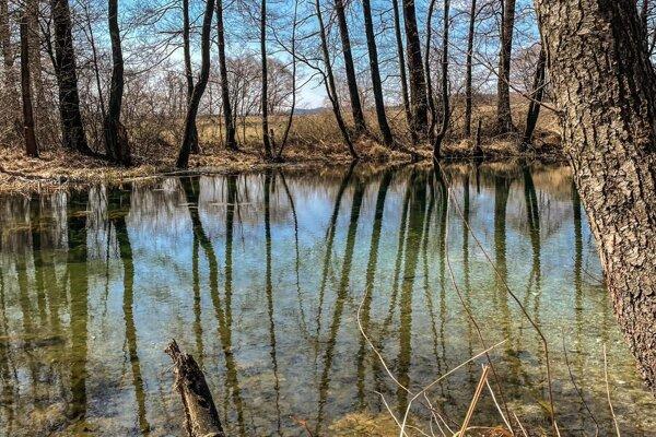 Príroda v okolí Kláštora pod Znievom.