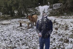Muž sa hrá so snehom v meste Sao Joaquim.
