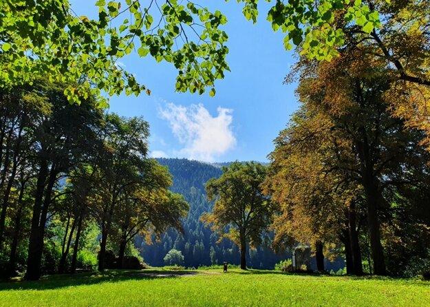 Miesto známe ako Zámčisko slúži ako mestský park, zdobí ho gaštanová alej.