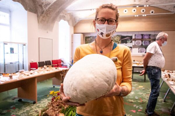 Barbora Kyzeková vedie mykologickú poradňu päť rokov. V rukách drží vatovec.