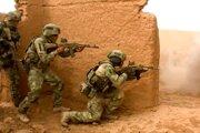 Zábery zo spoločného cvičenia ruských a tadžických vojakov poskytol tlačový odbor ruského ministerstva obrany.