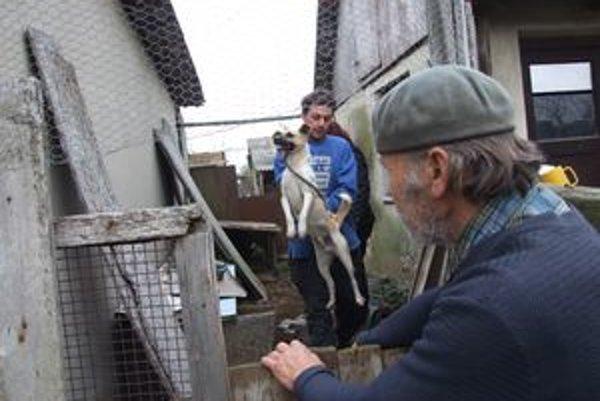 Traja pracovníci Slobody zvierat odchytili vyše dvadsať psov.