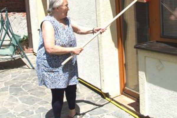 Miestne ženy musia celé dni zmetať húsenice z domov.