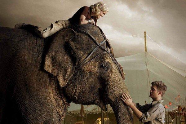 Voda pre slony (2011)