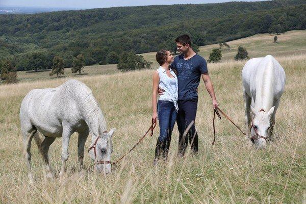 Divoké kone lákajú na peknú scenériu.