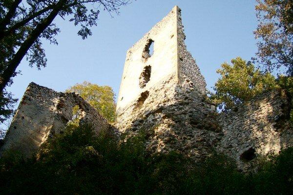 Zrúcanina hradu Dobrá Voda.