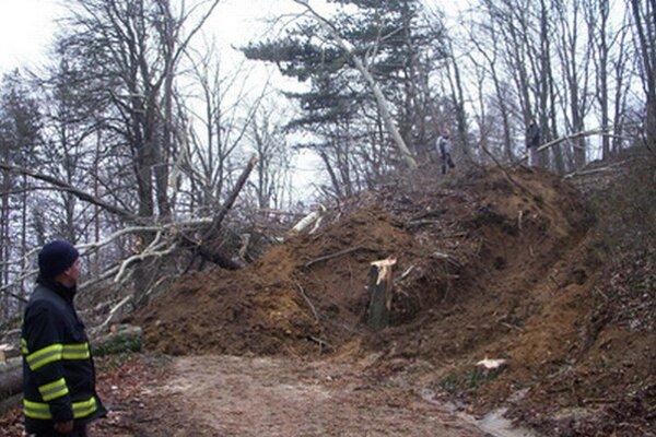 Zhruba 800 metrov kubických pôdy so stromami sa v utorok zosunulo na prístupovú cestu na Červenú vežu nad Piešťanmi.