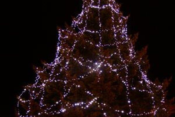 Vianočné stromy už v Trnave vyzdobili. O chvíľu budú dotvárať vianočnú atmosféru.