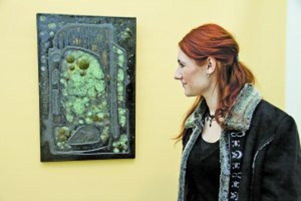 Ukážky z výstavy Miloša Balgavého v Galérii Jána Koniarka.