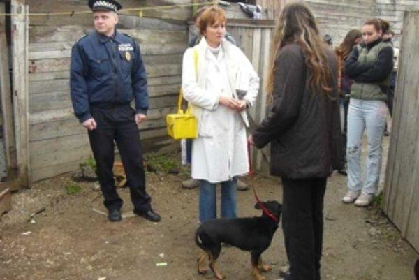 Takmer 60 psov z rómskej kolónie v Novom Meste nad Váhom vzala Sloboda zvierat na ošetrenie na veterinárnu kliniku do Bratislavy.