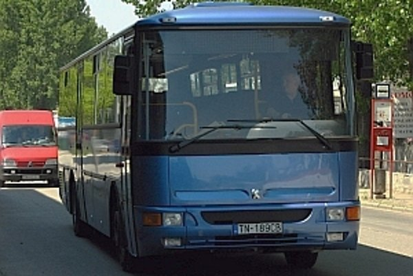 Väčšie možnosti sú pri cestovaní autobusom, po koľajniciach sa priamo nedostanete ani do niektorých veľkých slovenských miest.