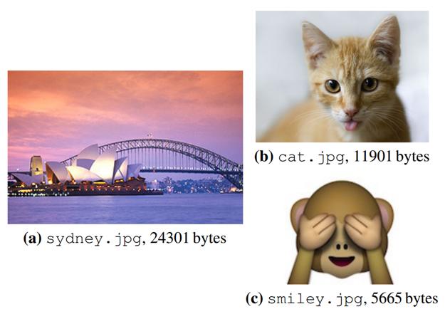 Tri obrázky, ktoré vedci zakódovali do DNA.
