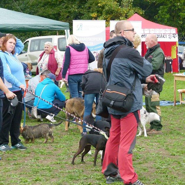 Ani počasie neodradilo milovníkov psov od účasti.