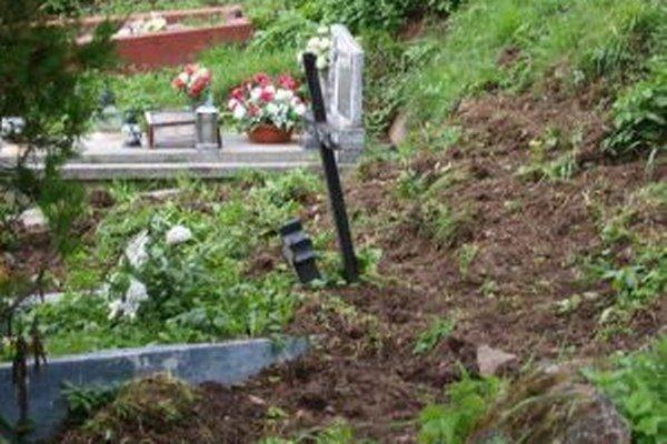 Diviaky sú na cintoríne v Kremnici ako doma.