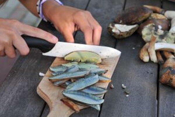 Napriek tomu, že pravá sezóna začala neskôr, hubári sa na úlovky nesťažujú.