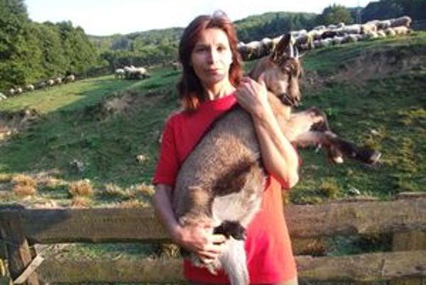 Bačovka Mária denne vyháňa na pašu dvestopäťdesiat oviec.