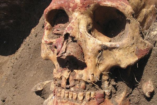 Lebka príslušníka jamovej kultúry pomaľovaná okrovou farbou