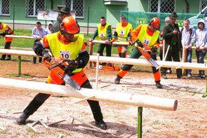 Kráľovská súťažná disciplína prác s motorovou pílou - paralelné odvetvovanie.