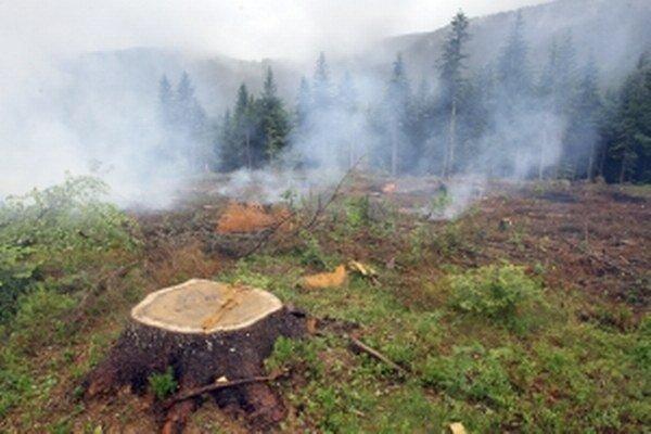 Oheň v prírode dokáže napáchať obrovské škody.