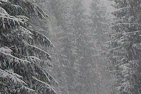 V horskej oblasti nad Hriňovou sa dnes dopoludnia rozsnežilo.