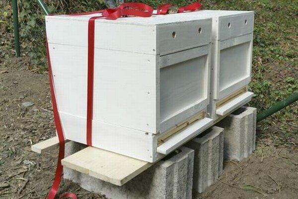 Úle osadili v tzv. anglickej časti lučeneckého parku, ktorá je menej navštevovaná. Včely by preto nemali ohrozovať okoloidúcich.