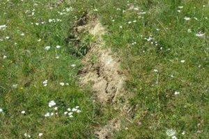 V Rudinke zaznamenali v roku 2013 zosuv pôdy. V súčasnosti sa na ňom neprejavujú známky aktivity.
