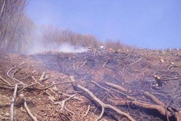 Vlani bolo na Kysuciach 88 požiarov, ktoré súviseli so zakladaním ohňa na skládkach odpadu, v lese, či v dôsledku  vypaľovania trávnatých porastov.
