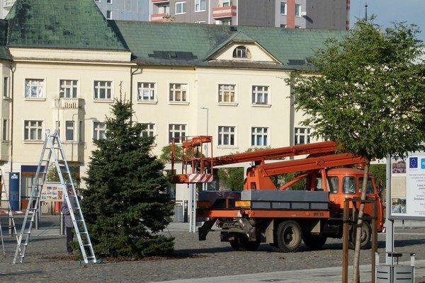 V centre Levíc zdobia stromček, ktorý tam zasadili počas revitralizácie námestia.
