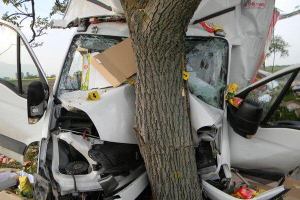 Jedna z nehôd, pri ktorej sa strom neuhol.