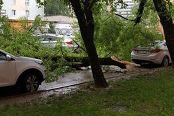 Strom poškodil autá.