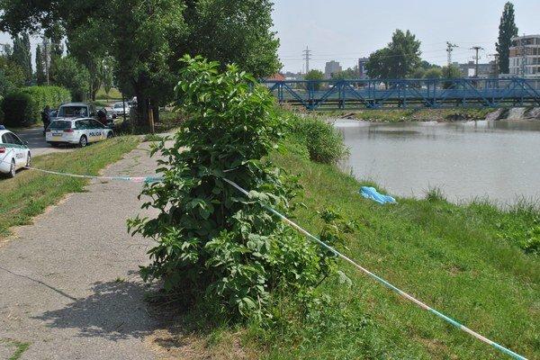 Telo vytiahli hasiči. Objavili ho vo vode pri opačnom brehu hneď vedľa mosta (v pozadí).